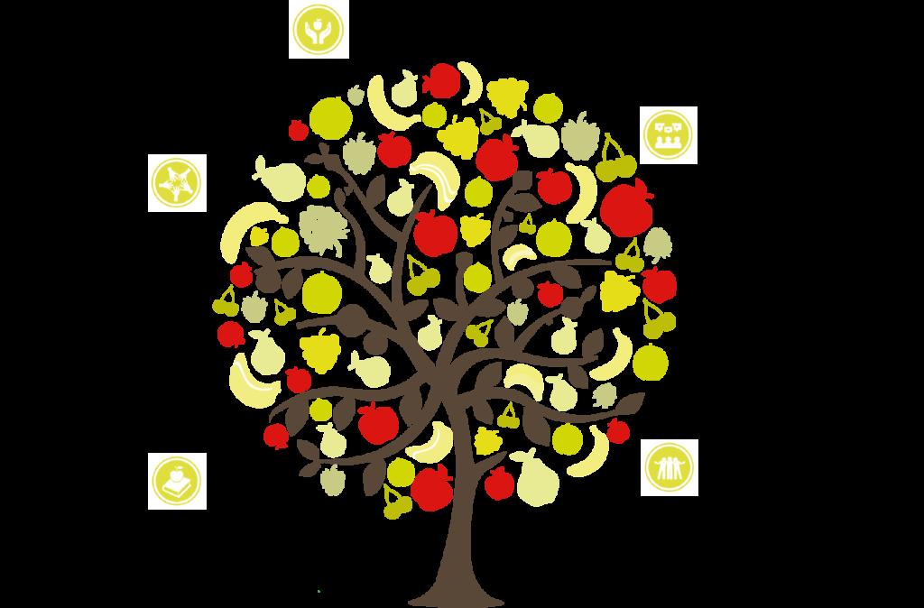 Fruit Your World Sociale Impact